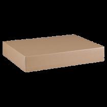 Arkivbox A4 55x315x240 mm