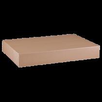 Arkivbox Folio 55x385x260 mm